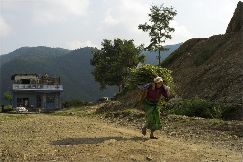 Nepal@zerbin_20