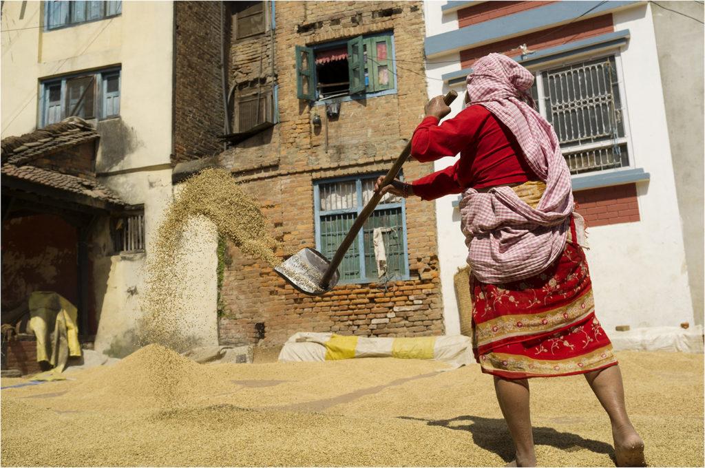 Nepal@zerbin_54