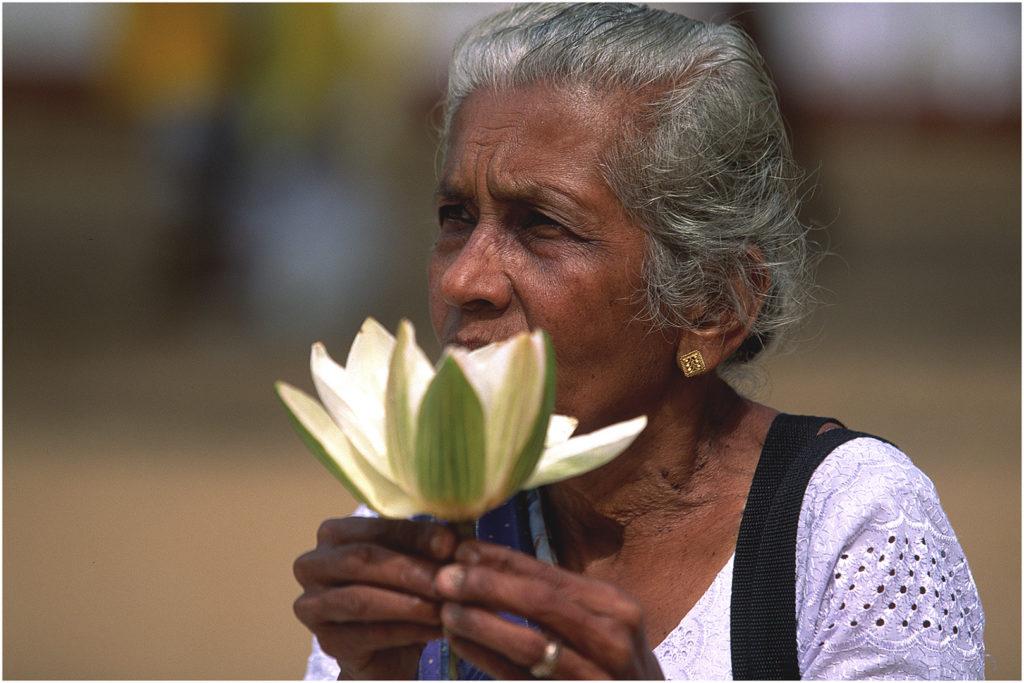 SriLanka@zerbin_27