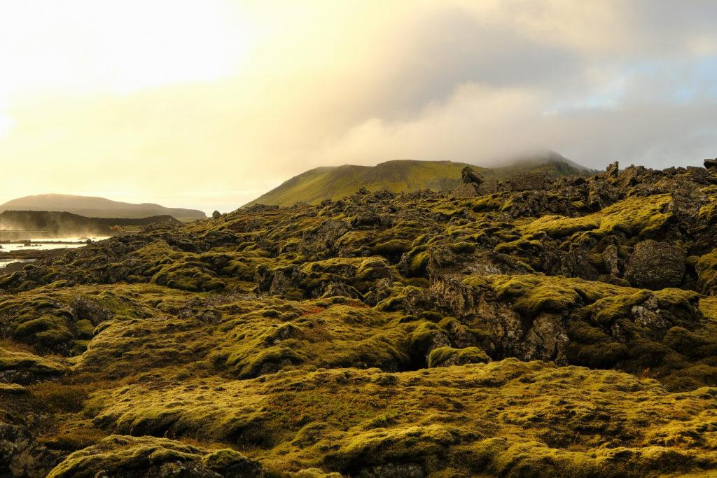 Iceland2@zerbin_003