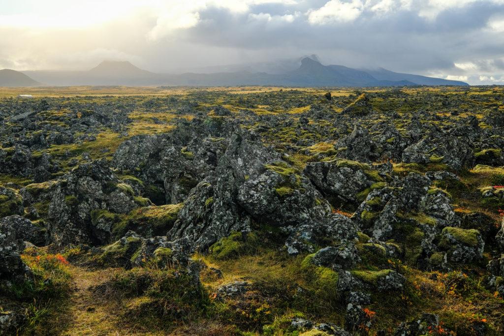 Iceland2@zerbin_079