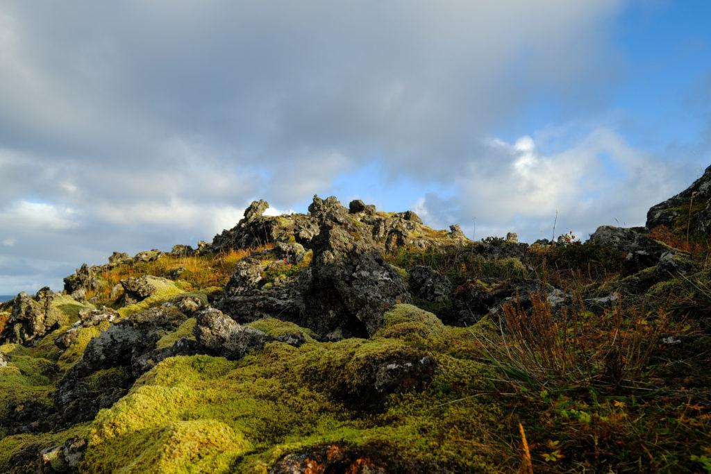 Iceland2@zerbin_080