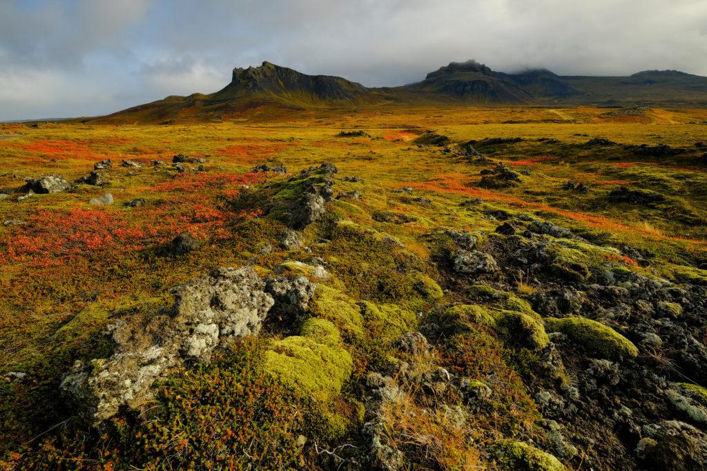Iceland2@zerbin_089