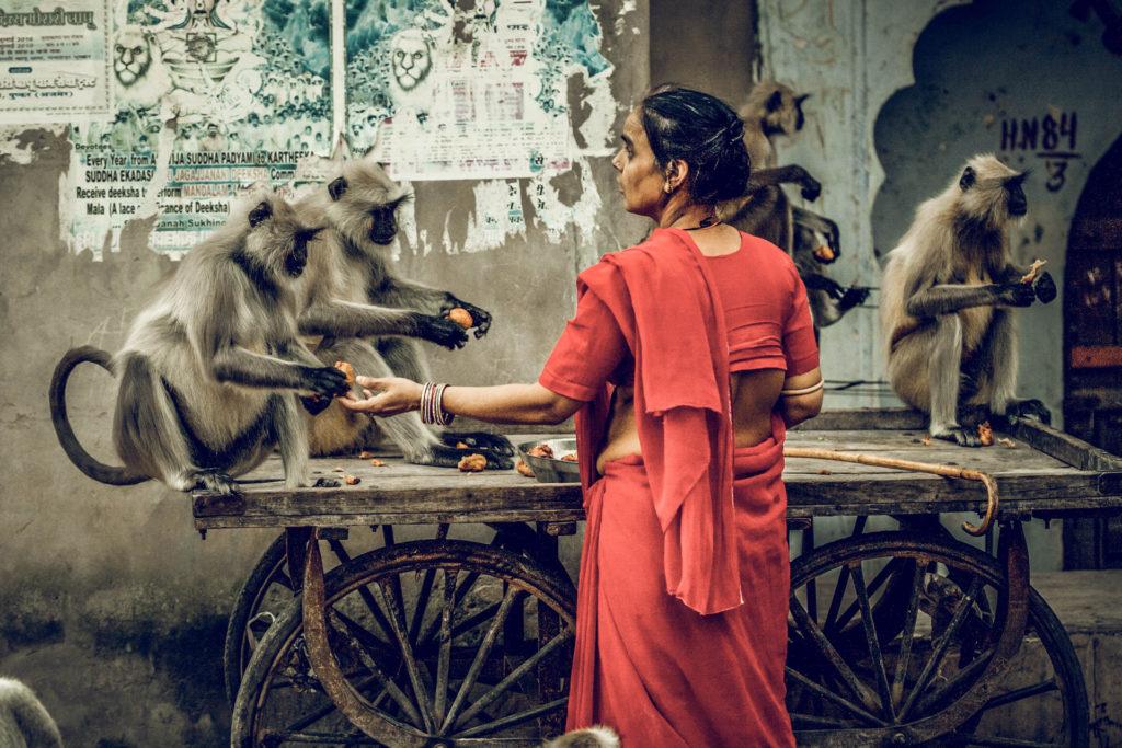 Indien2©zerbin_14