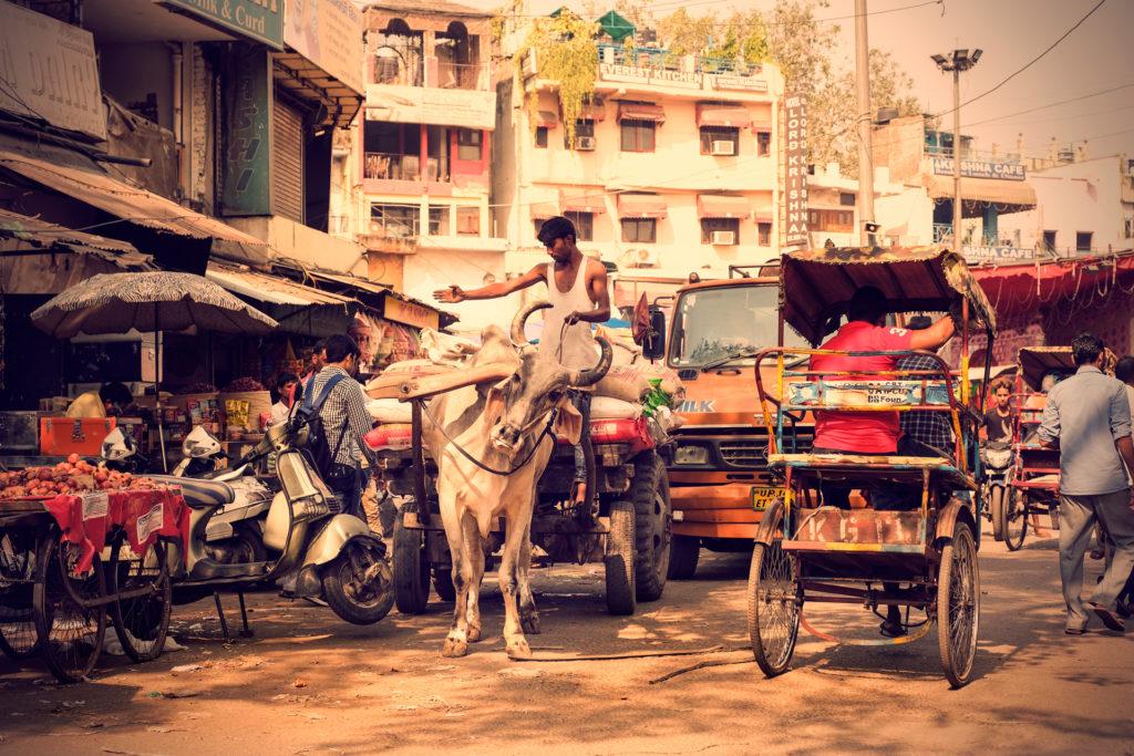 Indien2©zerbin_40
