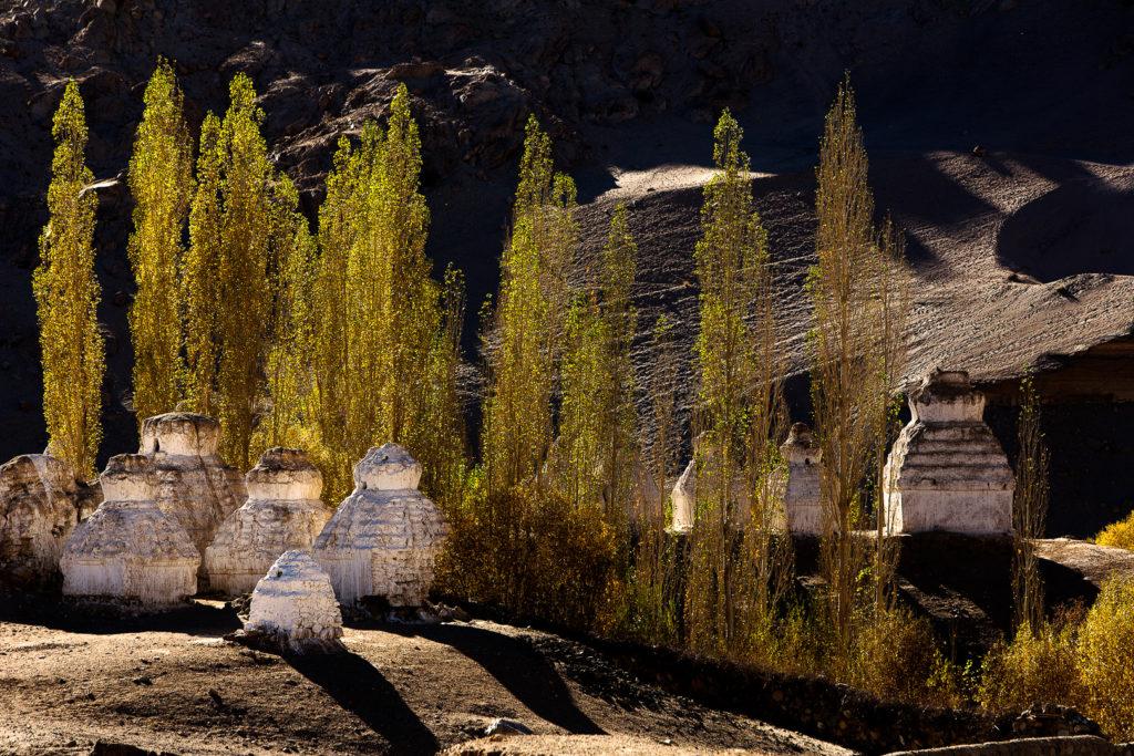 Ladakh 07