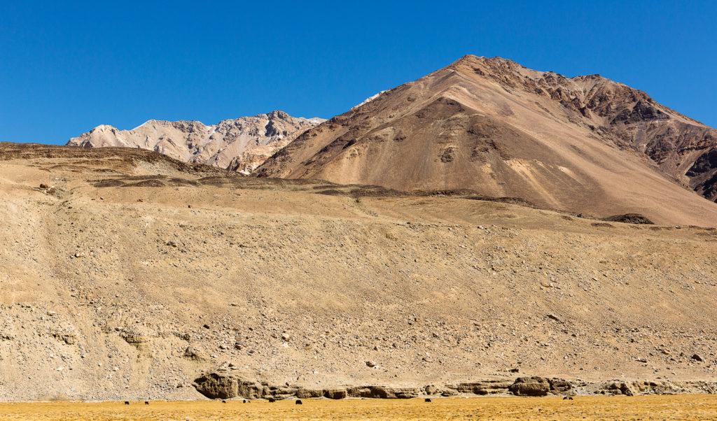 Ladakh 22